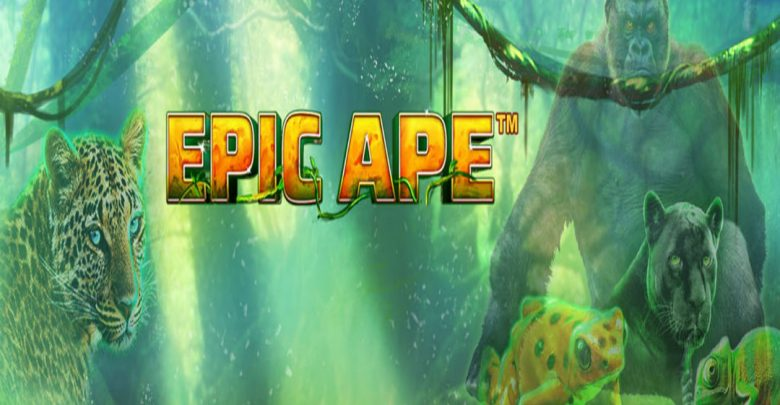 epicape1.jpg